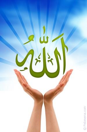 Сонник Аллах 😴 приснился, к чему снится Аллах во сне видеть?