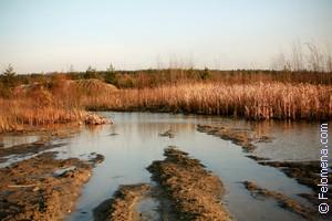 грязь в Болоте по соннику