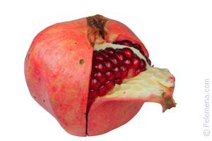 фрукт Граната по соннику