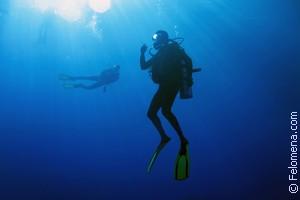 Нырять в море по соннику