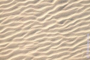 мокрый Песок по соннику