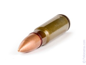 Одна пуля попала в грудь