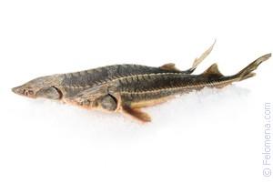 Как вкусно приготовить рыбу без соли