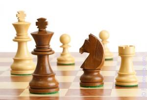 играть в Шахматы по соннику